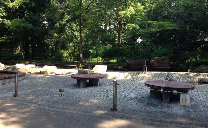 林試の森公園のジャブジャブ池はまだでした