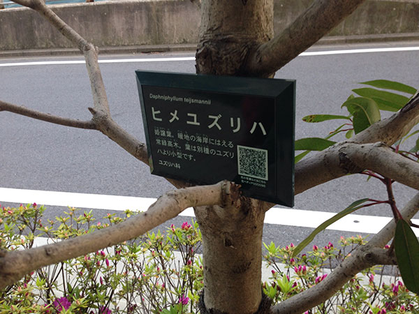 QRコードで花や樹木の情報をチェック「花ペディア」