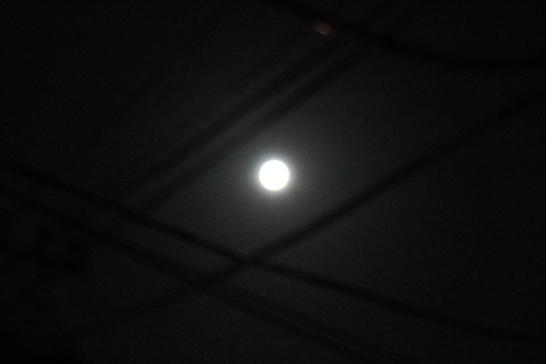 お月見団子
