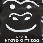 【京都市動物園】お土産のゴリララーメンをたべる
