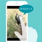 【Swift】ピンチイン・アウト・ダブルタップで画像を拡大する1(UIScrollView使用バージョン)