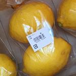 国産の檸檬を求めて