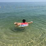 底が見える透明度!琵琶湖の近江舞子で泳いできた