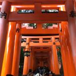 【京都】伏見稲荷大社で商売繁盛をお願いする