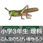 【既存の教科でプログラミング授業】こん虫のもけいを作ろう